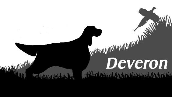 Dog Agility Training Perth Wa